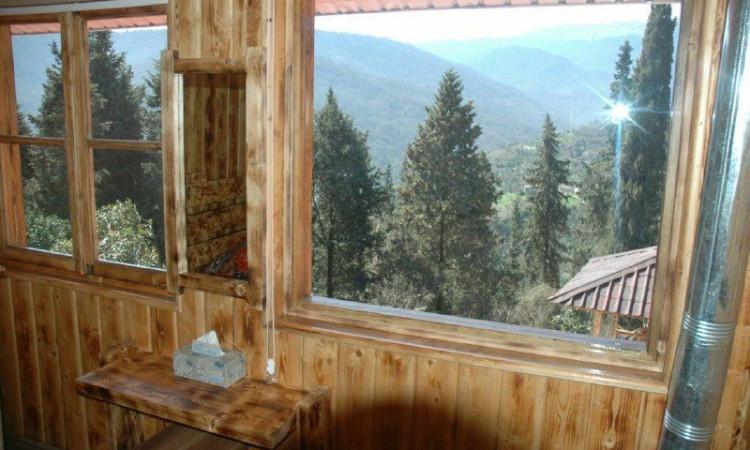 ویلا سه خوابه جنگلی دالیخانی