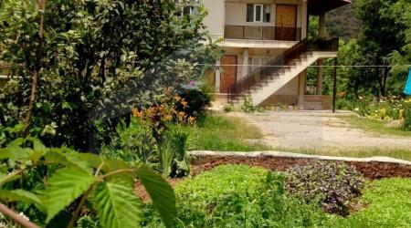 Three-Bedroom Forest Villa