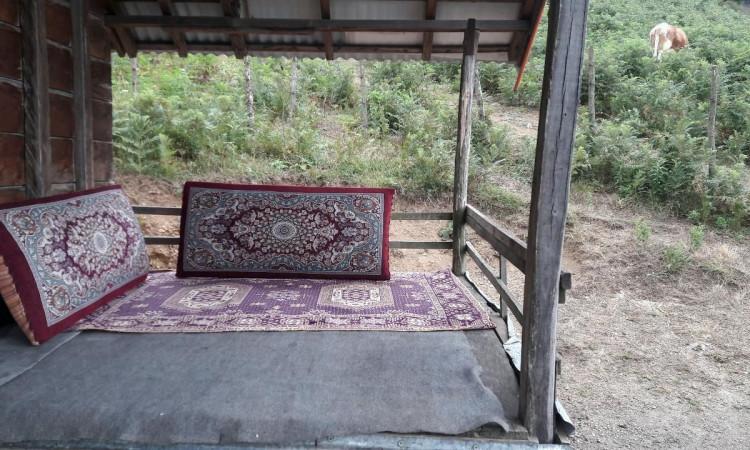 کلبه چوبی یک خوابه اولسبلنگاه