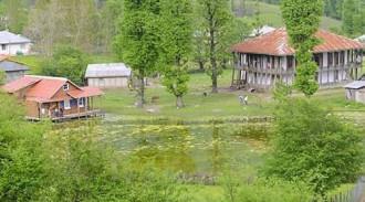 خانه روستایی جنگلی
