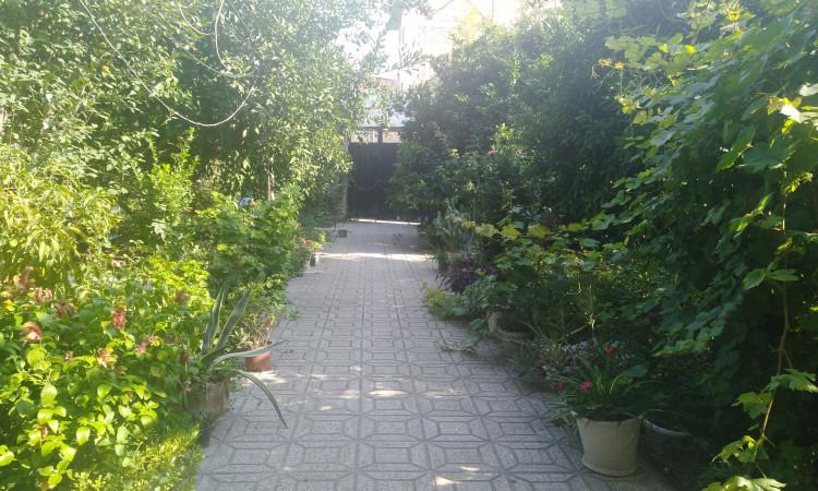 خانه نارنج باغ نکا