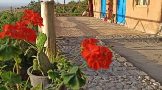 کوچه باغ باصفا سمنان