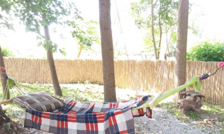 بومگردی امی وی جا سنگر (شباهنگام)