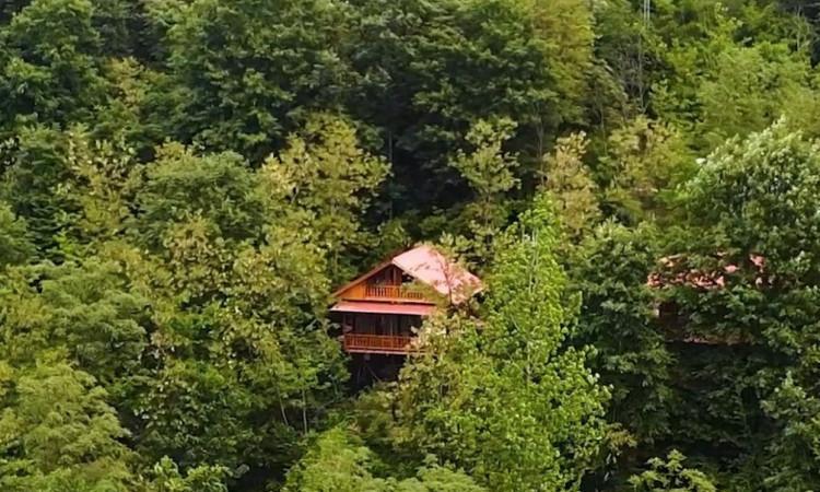 اکولوژ مزرعه قوها(کلبه چوبی دوبلکس)